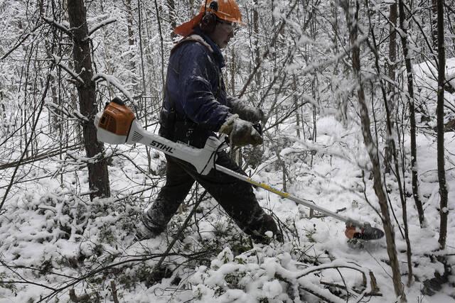 Metsuri tekemässä ennakkoraivausta