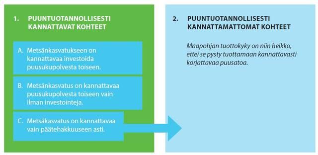 Suometsän puuntuotannollinen kannattavuus graafina