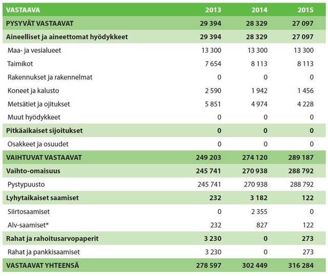 Metsätalousyrityksen tase vastaava-taulukko