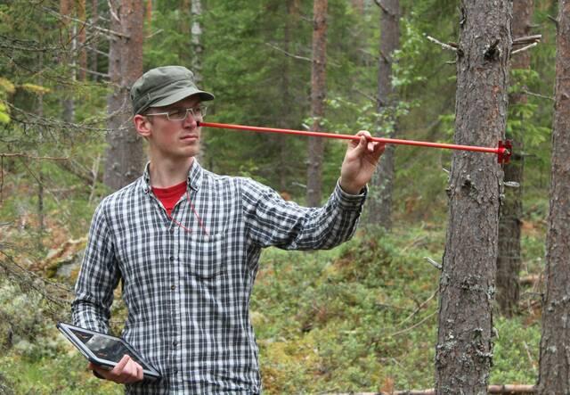 Puuston pohjapinta-alan mittaamista relaskoopilla