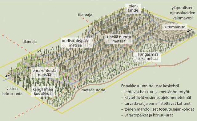 Suometsienhoitohankke karttapiirroksena