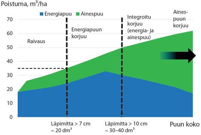 Periaatekuva hakattavien puiden koon vaikutuksesta hakkuutavan valintaan energiapuun korjuussa.