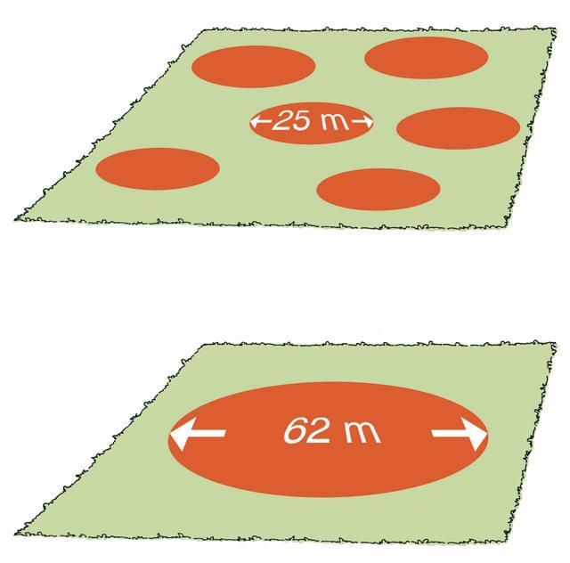 Pienaukkojen määrä hehtaarilla kaaviokuva