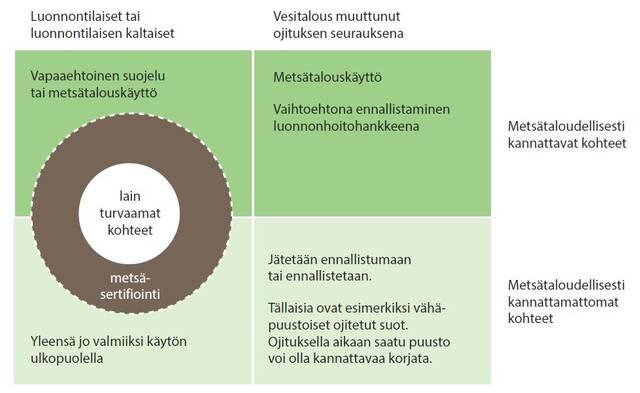 Suometsien luokittelu graafina