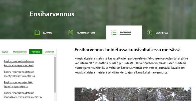 Kuvakaappaus verkkosivulta, jossa artikkeli rakentuu osista kuvaus, päätöksenteko, toteutus ja lisätietoa.