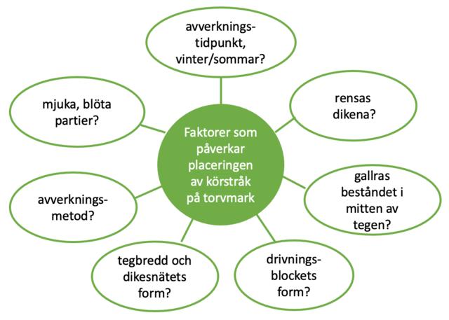 Placering av körstråk på torvjord, olika faktorer att beakta