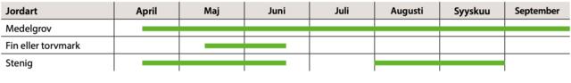 Planteringstidpunkter för gran, tabell