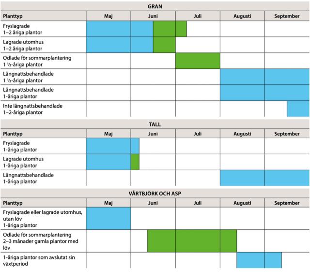 Planteringstidpunkter som tabell