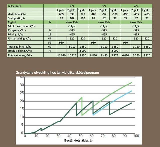 Skötselprogrammens inverkan på lönsamheten för tall