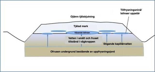 Tvärsnitt av en vägkropp där det uppstår islinser vid tillfrysning